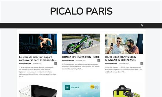 capture d'écran du site Collège Salaise sur Sanne - Salaise-sur-Sanne (38)